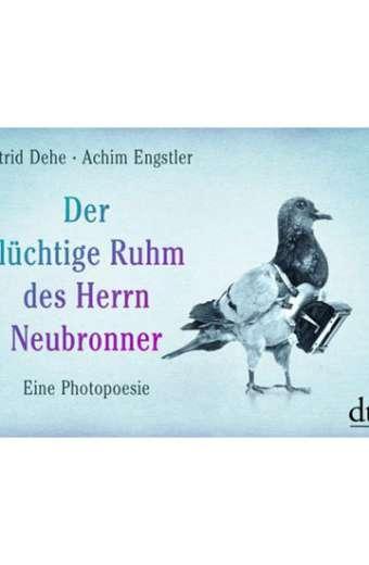 Buch Der flüchtige Ruhm des Herrn Neubronner